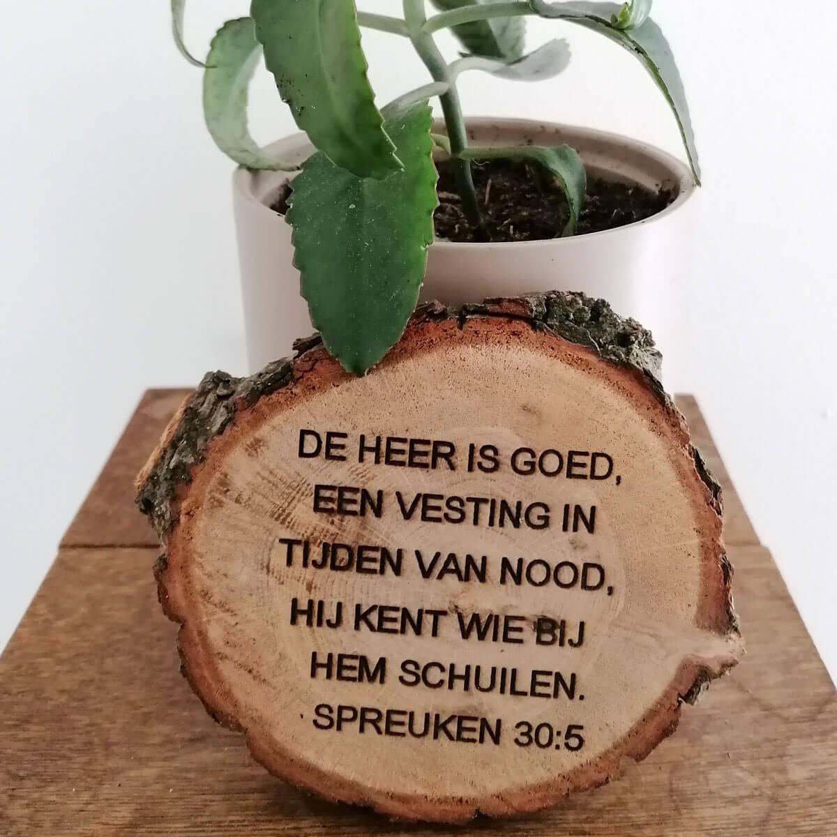 Haal de natuur in huis met dit boomschijf bordje