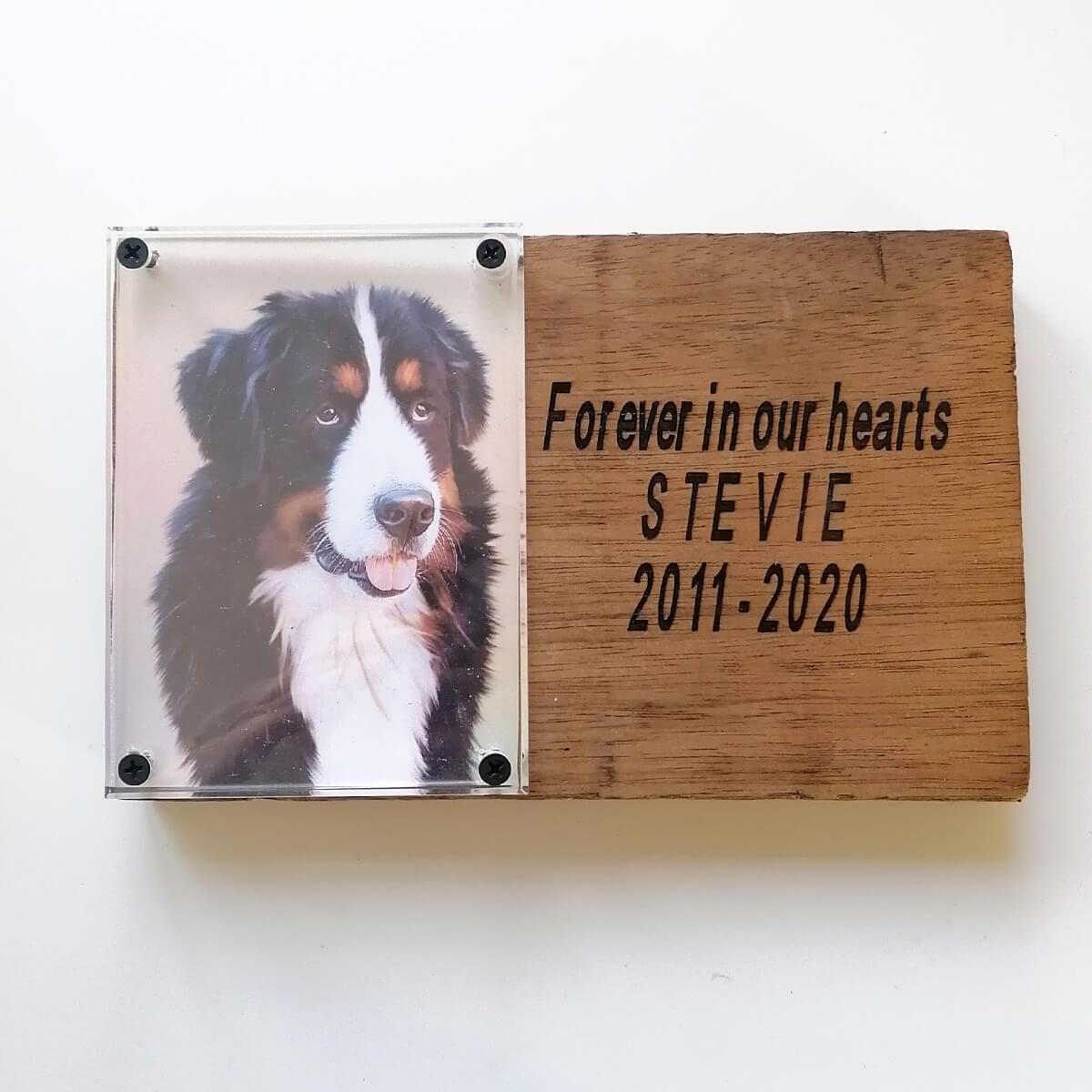 Herdenking van overleden huisdier plaat