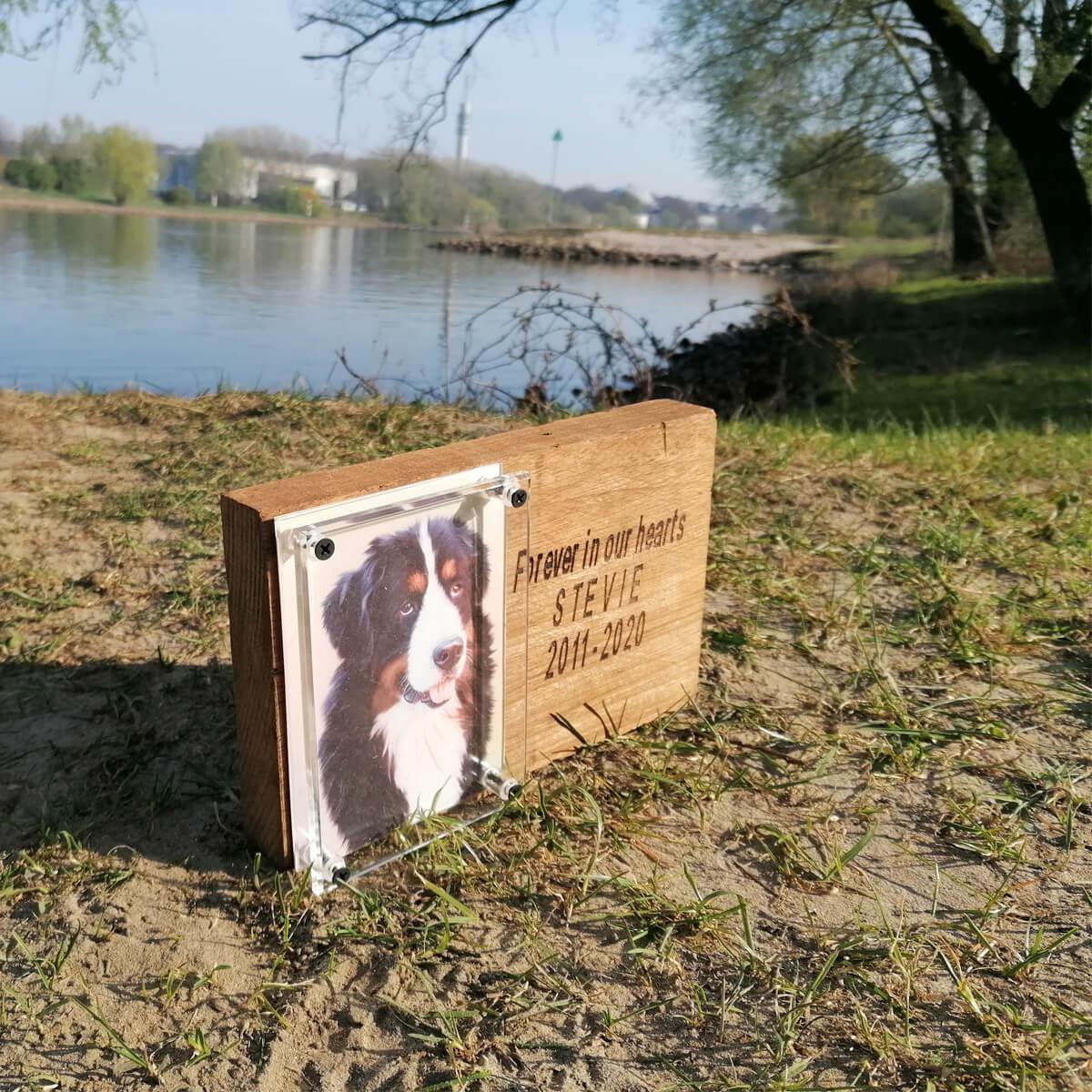Gedenkplaat voor je overleden paard, hond of kat, met foto en tekst