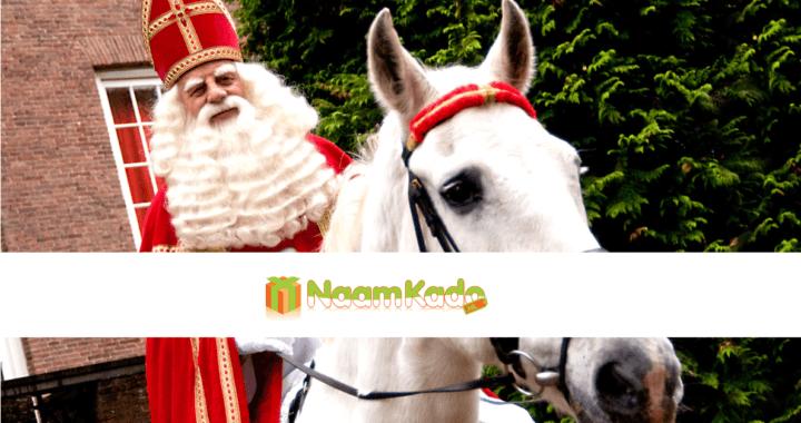 Sinterklaas in het land; tijd voor leuke kadootjes